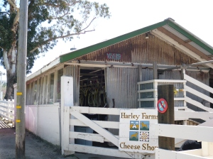 Pescadero Goat Farm